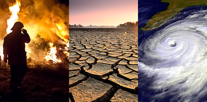How to Write a Climate Change Essay